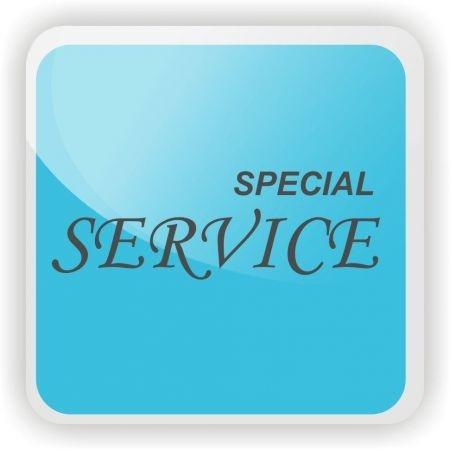 SPECIAL SERVICE : 2 feux DB2 seuls - Blanc