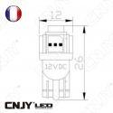 AMPOULE 5 LED SMD BLANC T10 W5W 24V DC -CULOT W2.1x9.5D POUR VEILLEUSE, FEUX DE PLAQUE, GABARIT CAMION