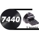 T20 W21W