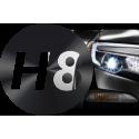 H8 - PGJ19-1