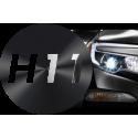 H11 - PGJ19-2