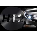H12 - PZ20D