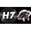 H7 - PX26D